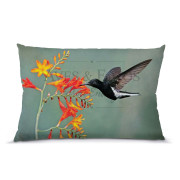Beija-flor-preto almofada 45x30cm Aves e Fotos Editora por Edson Endrigo