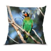 Curica-de-bochecha-laranja almofada 45x45cm Aves e Fotos Editora por Edson Endrigo