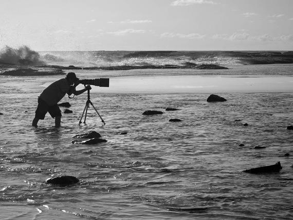 Edson Endrigo Aves e Fotos Editora 5