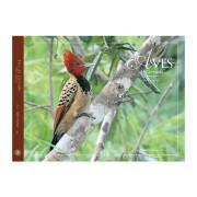 Livro Aves-do-Cerrado Volume 3 Coleção Aves do Bioma Brasileiro Aves e Fotos Editora por Edson Endrigo