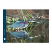 Livro-Aves-do-Pantanal-Volume-4-Coleção-Aves-do-Bioma-Brasileiro-Aves-e-Fotos-Editora-por-Edson-Endrigo-02