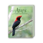 Livro Chapada-dos-Veadeiros Aves e Fotos Editora por Edson Endrigo