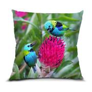 Saíra-sete-cores almofada 45x45cm Aves e Fotos Editora por Edson Endrigo