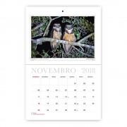 Calendario-Aves-Brasileiras-2018-Aves-e-Fotos-Editora-por-Edson-Endrigo-2